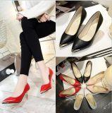 Zapatos elegantes de las señoras de la oficina de la punta del cambio de signo de los talones de los zapatos al por mayor de las mujeres