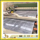 Mármol gris del nuevo hielo romano oscuro para los fondos de la pared y los azulejos de suelo