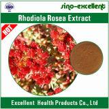 Het Uittreksel Totale Rosavins 3% van Rosea van Rhodiola