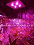 130W-1200W 온실 또는 의학 플랜트 LED는 도매를 위한 빛을 증가한다