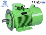 B35 Frequenzumsetzungs-Geschwindigkeits-Steuerdauermagnetelektromotor Wechselstrommotor B35
