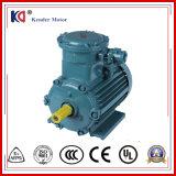 Yb2 de Vuurvaste Elektrische Motor van de Motor met de Prijs van de Fabriek