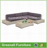 Meubles extérieurs modernes de sofa de jardin de patio de loisirs de rotin de PE