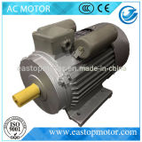 Yc Capacitor Induction Motor per Medio Oriente con Coi (YC112M-4)