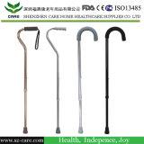 참을성 있는 사용 북유럽 지팡이