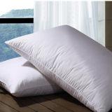 백색 색깔 연약한 Microfiber 표준 베개 45X75cm (DPF10121)