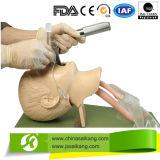Manichino avanzato di addestramento di CPR con servizio professionale