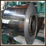 Tira profissional do aço inoxidável de Highquantity da fonte