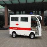 De Jonge geitjes die van Minoplis de Elektrische Auto van de Ziekenwagen rsd-T4 spelen
