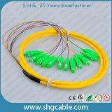 12 tresse de fibre optique de groupe de mode unitaire du faisceau Sc/APC