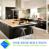 Temperament Glass und Lacquer Finish Modern Home Furniture Kitchen Cabinets (ZY 1082)