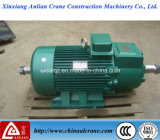 Doppelter Output Shaft Electric Three Phase WS Motor für Sale