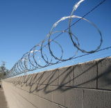 Border Fenceの高いSecurity Galvanized Razor Wire Using