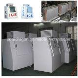 Escaninho de armazenamento ensacado do gelo do gelo especialista das técnicas mercantís ao ar livre para armazenar 960lbs. Gelo