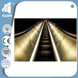 Cer-anerkannte im Freienrolltreppe mit Vvvf Steuerung