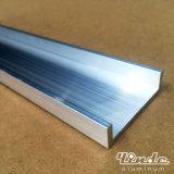 Profil en aluminium de barre/extrusion en aluminium avec le bassin peu profond