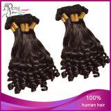 Cheveu de cheveux humains de 100% le meilleur