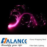 Fibra óptica Lash para Nighttime Event