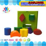 Bouwstenen van de Classificatie van het Stuk speelgoed van de Desktop van kinderen de Plastic Geometrische