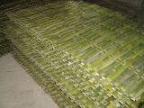Natuurlijke Omheining van het Bamboe van de Prijs van de Verkoop van de fabriek de Directe Goedkope