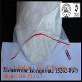 Testosteron Isocaproate Steroids Powder für Muscle Building CAS 15262-86-9