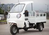 새로운 세발자전거 화물 Box/ABS 오두막 화물 기관자전차