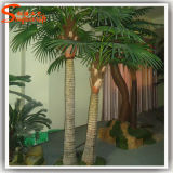 Palma artificiale diretta della noce di cocco della fabbrica