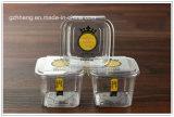 주문 Plastic PP Cookie 또는 사탕 또는 케이크 상자 (선물 포장 주석)