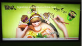 Светлое Box Material, PVC Backlit Flex Banner (500dx1000d 440g, 500g, 610g)