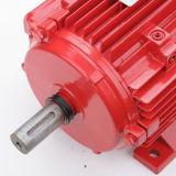 Motor asíncrono trifásico del extractor del humo de la lucha contra el fuego de la eficacia alta