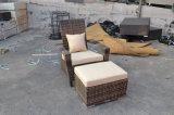 Aus Weiden geflochtenes im Freiengarten-Patio-Möbel-Set
