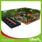 Terrain de jeux d'intérieur des enfants avec le tremplin
