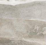 De zandige Tegel van de Muur van de Vloer van het Porselein van het Land (LT6606)