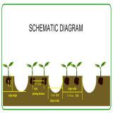 Broca do amendoim da máquina de duas fileiras/máquina de semear/plantador agriculturais Multifunction do monte