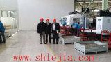 Máquina de /Punch do perfurador da torreta do CNC (venda quente)