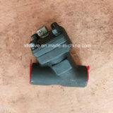 API6dによって造られる炭素鋼またはステンレス鋼Yのタイプこし器