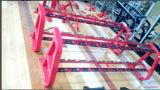 Equipamento da aptidão/equipamento da ginástica/cremalheira do Dumbbell (10 pares) (SW33)