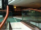 Balustrade 2016 d'escalier de mode de qualité de DM Kahua de Foshan
