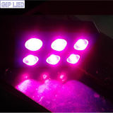 6 COB Chips 42*3W LED Grow Light 756W