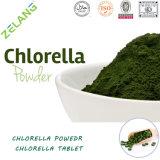 Pó quebrado maioria orgânico natural do Chlorella da divisão celular de Superfood