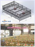 Automatisches Equipment in Poultry Farming House für Broiler Chicken