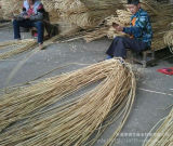 Manufactory de bambu da vara do Rattan
