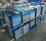 Piatto dell'acciaio inossidabile di alta qualità (409 430, 410)