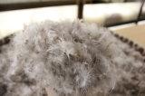 30% graue Gans unten für harte Kissen-und Deckel-Plombe