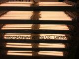 LVD 2 da garantia do diodo emissor de luz anos de luz do sarrafo (WD-300-Batten-10W)