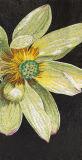 Lirio de agua de cristal corte de la mano del arte del mosaico de imagen (CFD98)