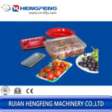 De Container die van het fruit Machine (vier posten) maken