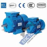 Motor de C.A. da eficiência elevada de ferro de molde Ie1 do IEC 2pole