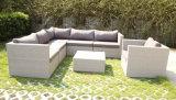 Jogo econômico de vime do sofá do melhor vendedor da mobília do Rattan do jardim