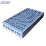 Gip 5W Chips 900W 1000W 12 악대 LED Grow Light